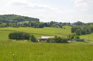 Kuhstall Panorama
